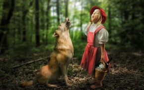 Picture forest, meeting, wolf, the situation, girl, Little Red Riding Hood