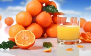 Picture glass, oranges, juice, fruit, leaves, citrus, orange, peel