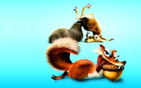 Picture walnut, protein, ice age, blue background, ice age, scrat
