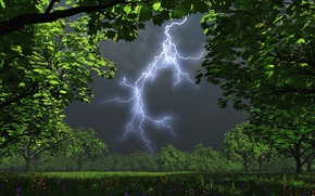 Picture the storm, trees, night, lightning, garden