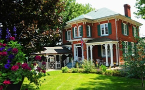 Picture flowers, the city, house, garden, cottage