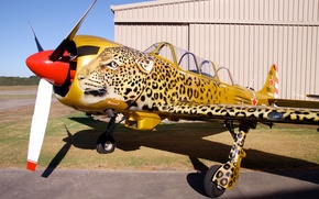 Picture leopard, wing, collection, the plane, Soviet, training, airbrushing, monoplane, military, Russian, private, metal, retro., The ...