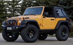 Picture trees, yellow, concept, jeep, SUV, the concept, the front, jeep, wrangler, Ringler, traildozer