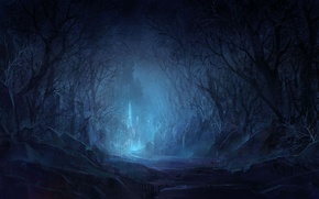 Picture forest, trees, night, stones, castle