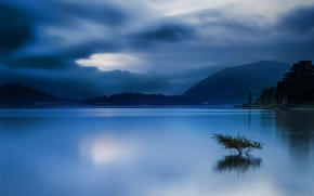 Picture forest, sky, trees, landscape, Italy, coast, nature, water, mountains, clouds, lake, evening, hills, houses, village