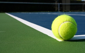 Wallpaper line, tennis, ball