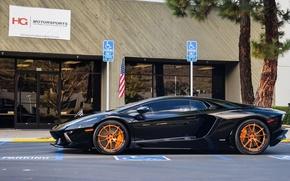 Picture blackбламборгини, aventador, lp700-4, aventador, orange, drives, lamborghini, profile, black