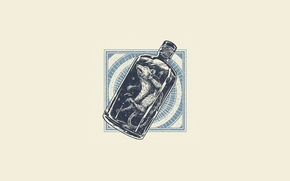 Wallpaper bottle, minimalism, capsule, rat, dead, bottle