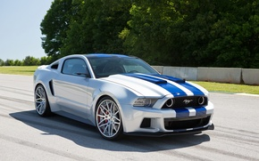 Picture Mustang, Ford, Shelby, Trek, Ford, Mustang, Front, Before, Need For Speed, Track, Movie, 2014