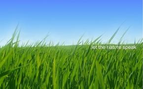 Picture Nature, Sky, Grass, Green, Field, Speak