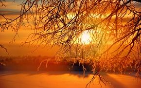 Wallpaper sunset, the sun, winter, Sunrises, sunset, winter