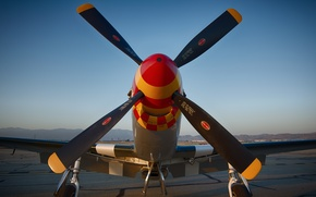 Picture fighter, Mustang, propeller, the airfield