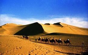 Picture sand, landscape, the dunes, desert, caravan, tourists, Sudan