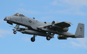 Picture attack, A-10, Thunderbolt II, single
