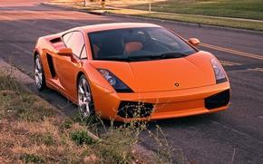 Picture road, orange, gallardo, lamborghini, front view, orange, Lamborghini, Gallardo, lp540-4