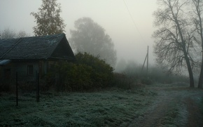 Picture fog, house, village