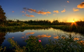 Picture sunset, lake, the evening