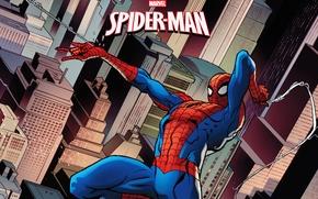 Picture spider-man, marvel, comics