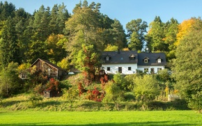 Picture greens, grass, the sun, trees, glade, Germany, slope, Bayern, houses