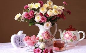 Picture tea, watch, bouquet, chrysanthemum, marmalade