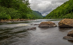 Picture forest, the sky, trees, mountains, clouds, river, stones, slope