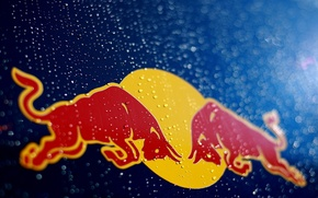 Picture Logo, Red Bull, Vettel, Logo, team, Motorsport, racing, Bulls, Brand, Energetic
