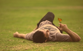 Picture grass, field, butterfly, man, lying down