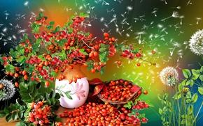 Picture briar, vase, dandelions, Rowan, Still life