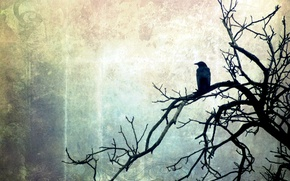 Picture style, background, tree, bird