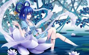 Picture water, girl, anime, art, Lotus, art, touhou kaku, Shine bell