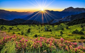 Picture the sun, rays, landscape, mountains, glade