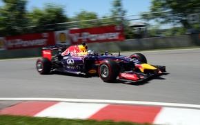 Picture Racer, Canada, Formula 1, Red Bull, Vettel, Champion, Sebastian, RB10