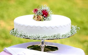 Picture holiday, roses, cake, cream, wedding, sweet