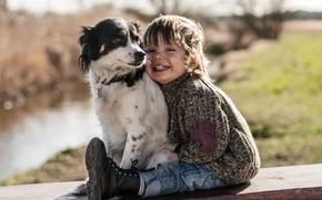 Picture joy, mood, dog, boy, friends