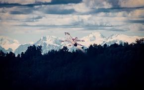 Picture flight, fighter, F-16, Fighting Falcon, Thunderbird
