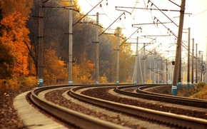 Picture road, autumn, trees, landscape, the way, photo, gold, rails, train, trains