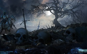Picture skull, sword, fantasy, witchcraft, the middle ages