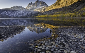 Picture forest, mountains, nature, lake, stones