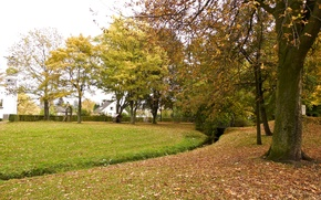 Picture autumn, Park, foliage, falling leaves, park, Autumn, leaves, fall
