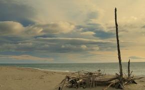 Wallpaper sea, branches, Shore
