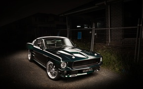 Picture Mustang, Ford, 1967, Fastback