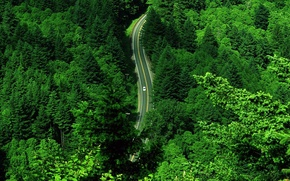 Wallpaper road, greens, machine