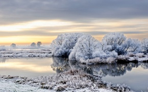 Picture snow, winter, frost, Germany, trees, river