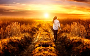 Picture field, girl, the way, Alessandro Di Cicco, Way to heaven