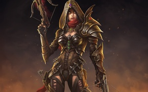 Picture girl, art, hood, Diablo III, crossbow, Demon Hunter, Reaper of Souls