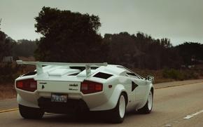 Picture white, supercar, white, supercar, Voitur, Countach, Lamborghini, Countach, 5000QV