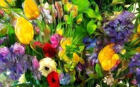 Picture grass, flowers, petals, garden, meadow