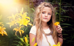 Picture portrait, girl, yellow flowers, child photography