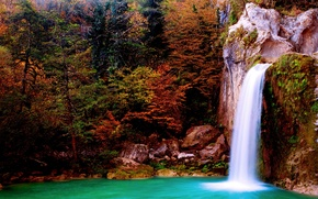 Picture autumn, forest, trees, stones, waterfall
