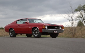 Picture Chevrolet, red, Chevelle, 1972